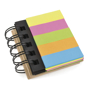 notebook flag tags