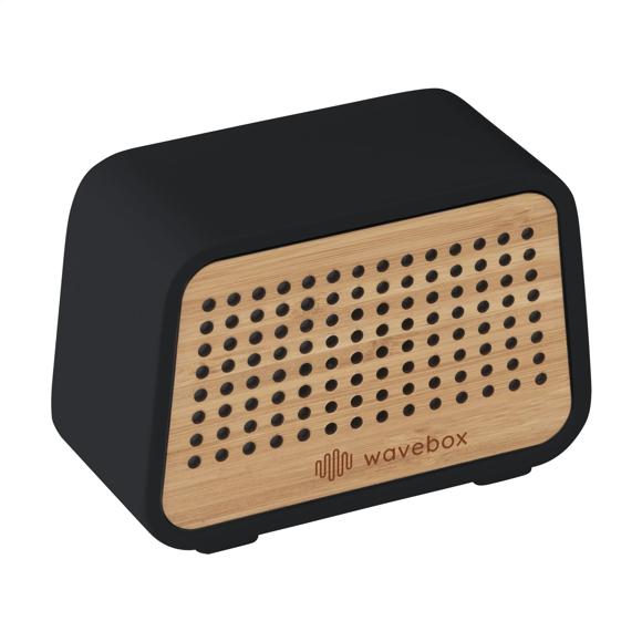 Stone Eco speaker